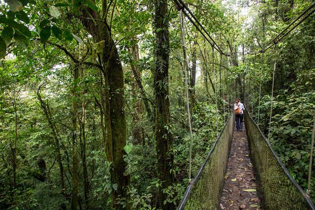 Puentes colgantes del Heliconias Lodge en Bijagua