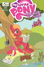 My Little Pony Friendship is Magic #10 Comic Cover Retailer Incentive Variant
