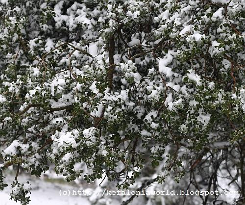 Snow on Mt. Aenos, Kefalonia