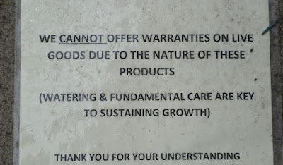 no warranty sign on plants at big box store paul jung toronto ecological organic gardening services