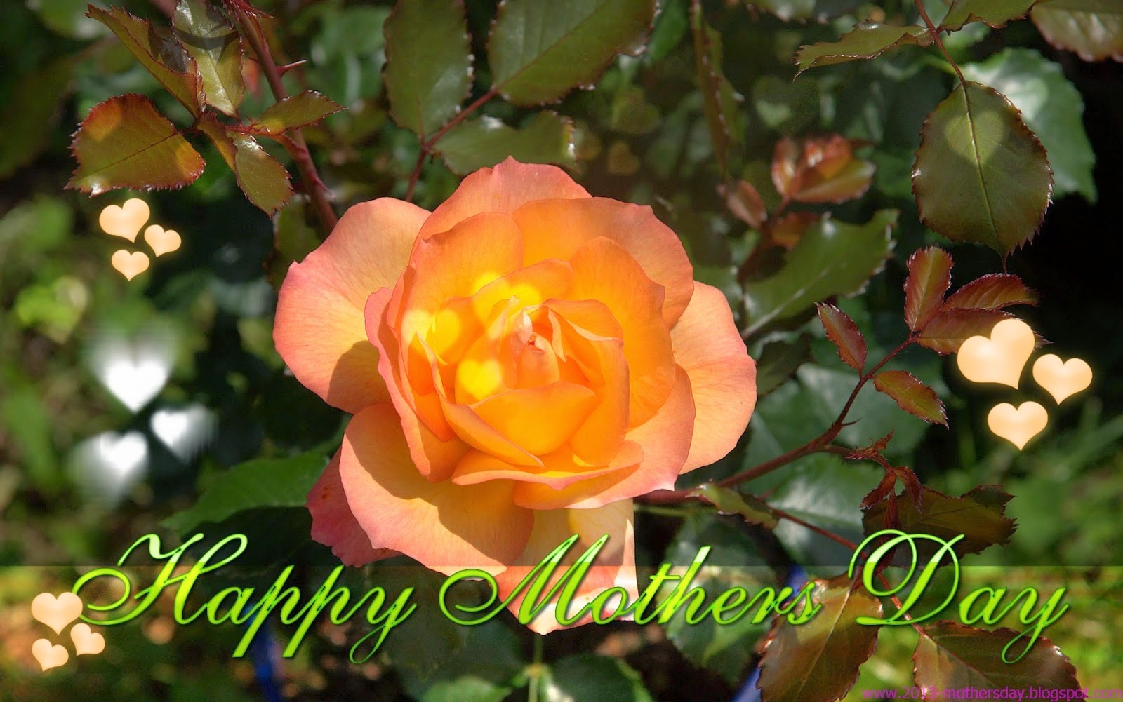 HD Desktop Wallpapers For Mothers Day 2014