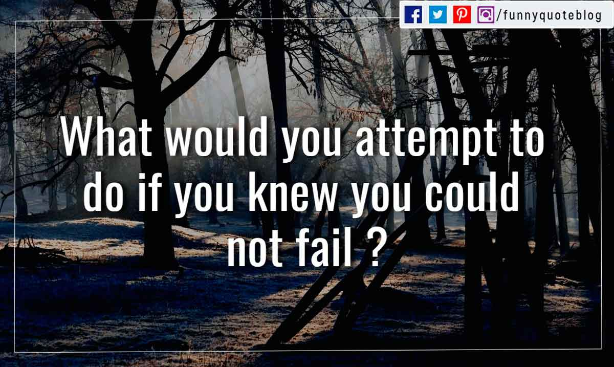 What would you attempt to do if you knew you could not fail ?