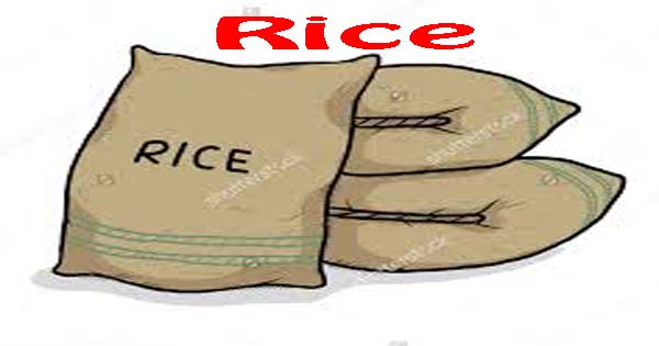 Exploratory Essay Rice Is The Chief Food Of Our Kashmiri And Bengali Brethren It Grows In  Abundance Not Only In Bangla Desh But Also In The Districts Of Sialkot  Sheikhupura  Cause And Effect Of Stress Essay also Organizational Change Essay Rice Essay In English  Hania Naz Grammar Title For College Essay