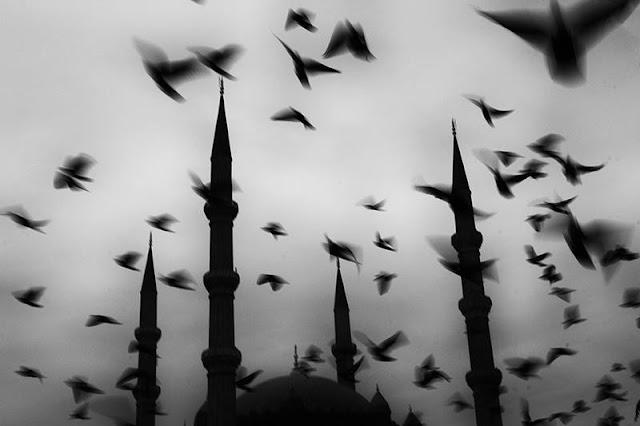 Αποτέλεσμα εικόνας για ισλάμ φωτο