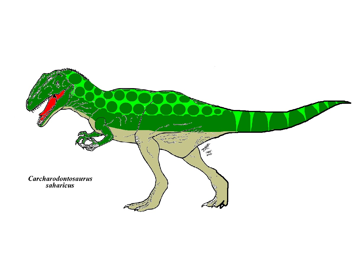 My news may 2012 for Carcharodontosaurus coloring page