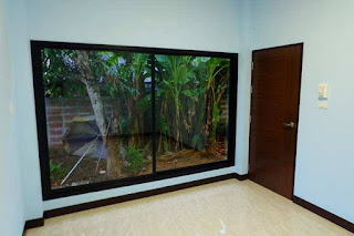 Desain Rumah Minimalis 1 Satu Kamar Tidur Lengkap Interior Eksterior