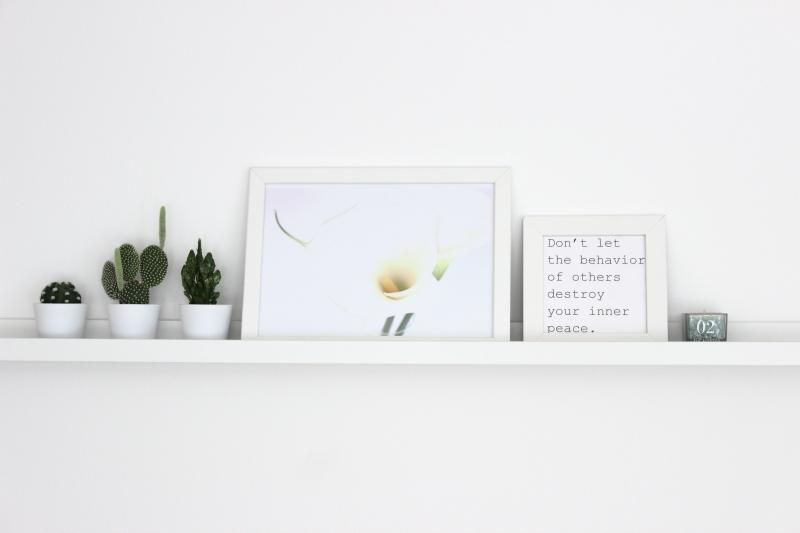 Zimmerpflanzen, Deko in grün, Kakteen, meinshelfie, shelfie, Frühling, Frühlingsdekoration, white living, urban jungle