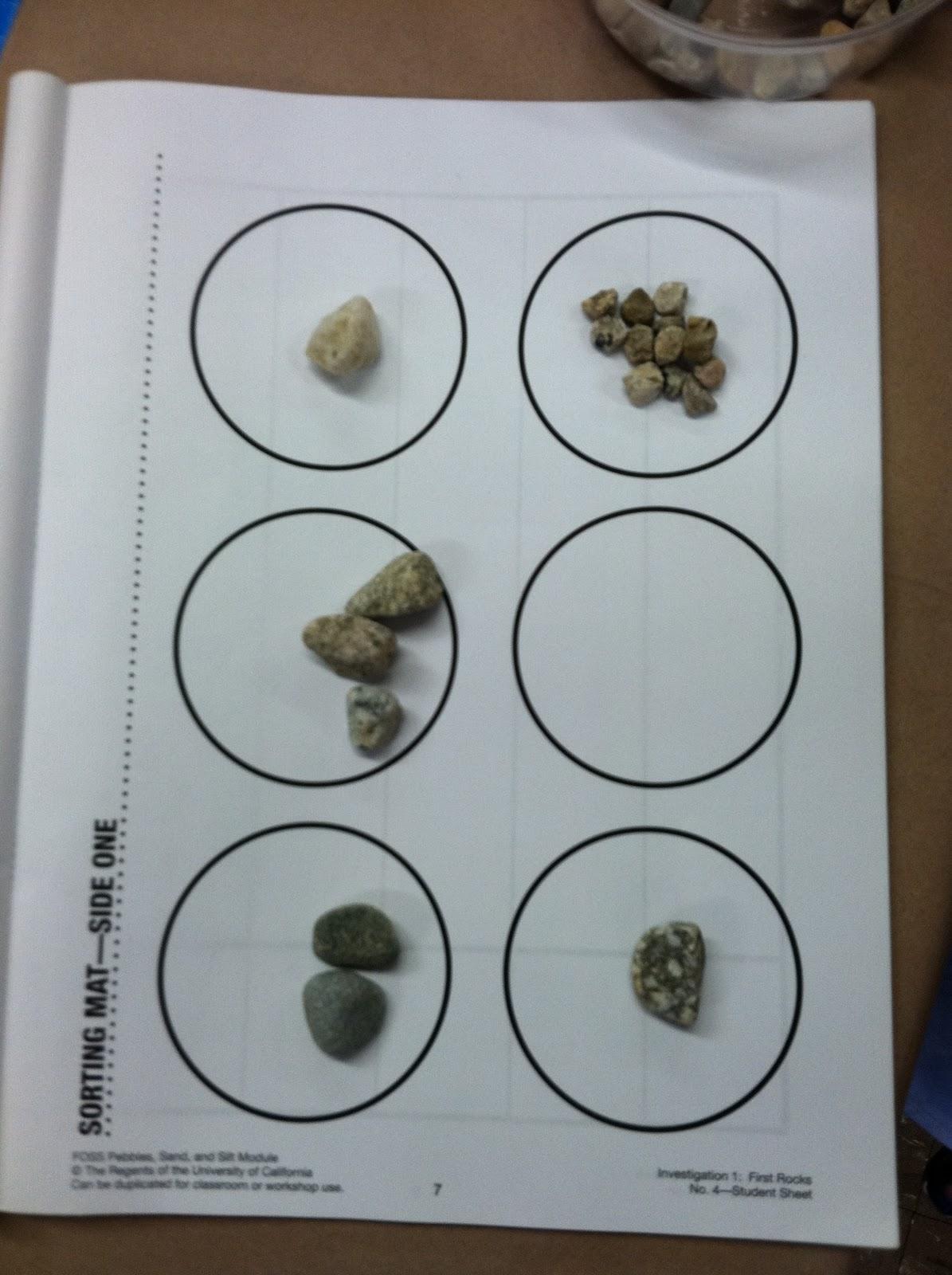 Class 2m9 Sorting Rocks