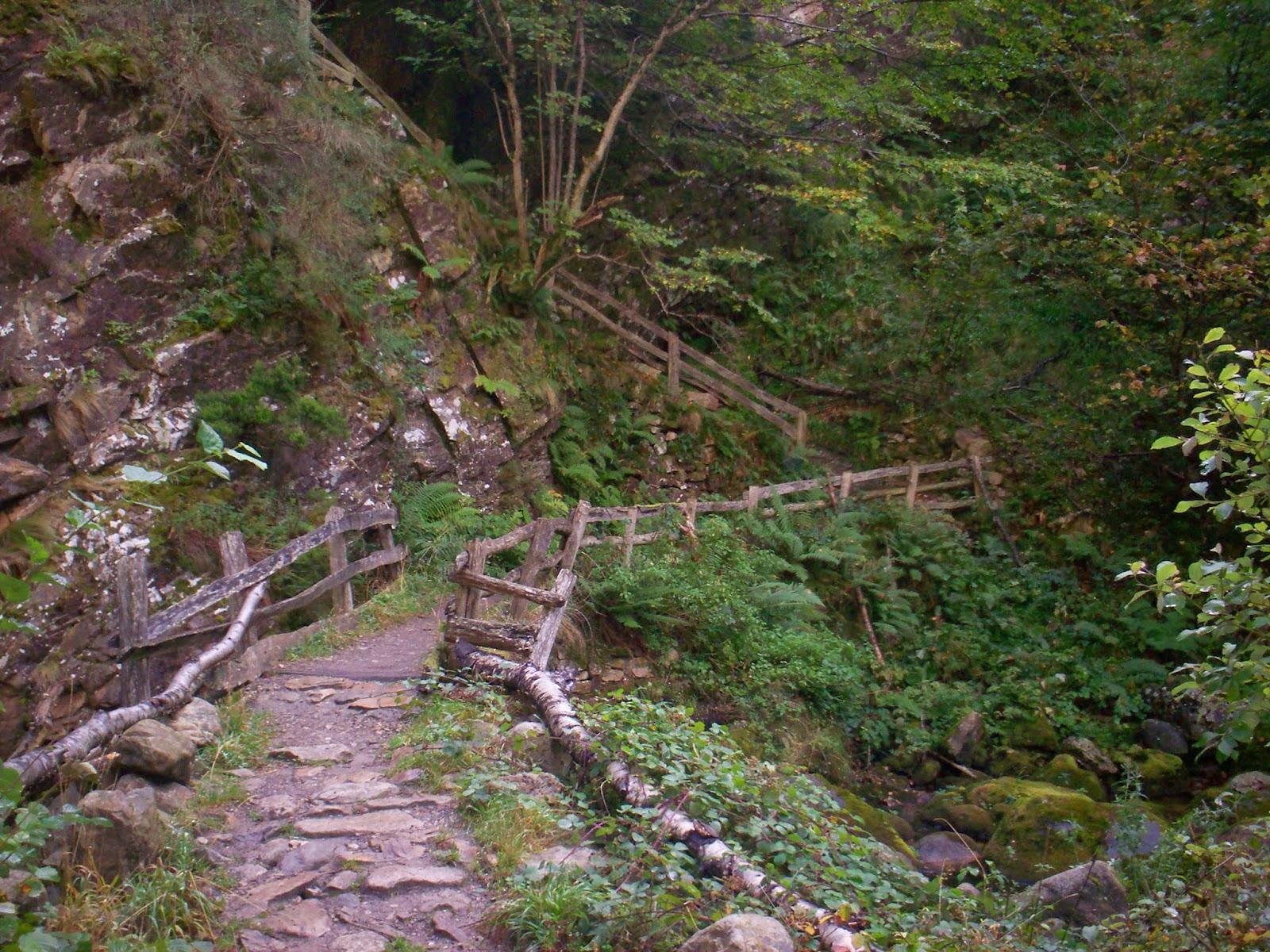 Camino marcado en el Desfiladero de los Arrudos en Redes