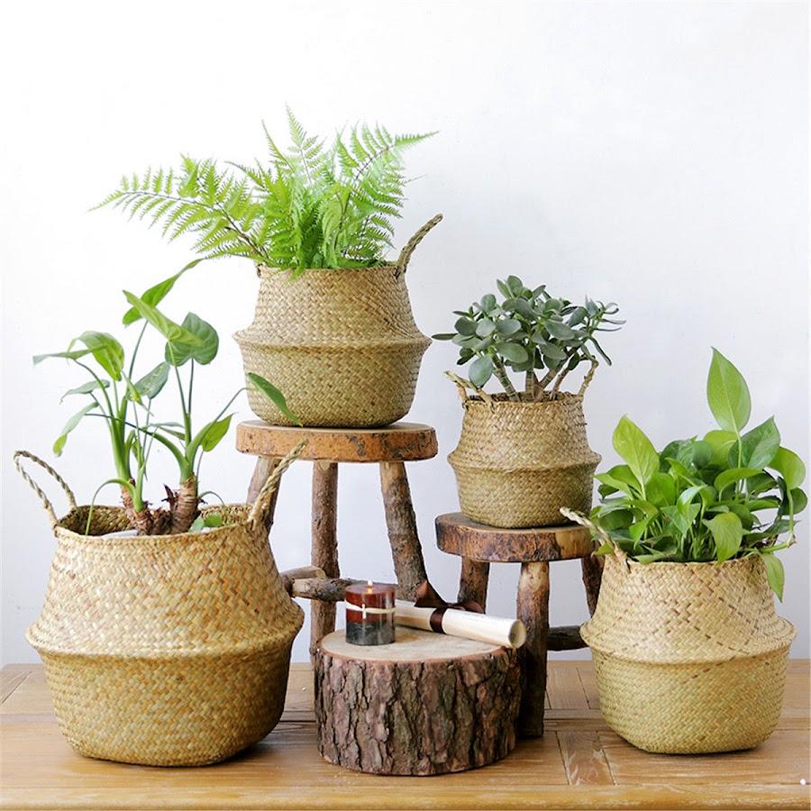 Las mejores macetas y cestas para plantas