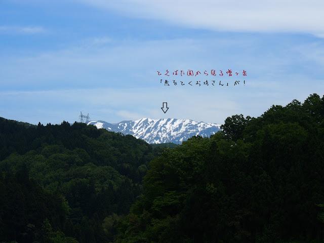 僧ヶ岳の残雪絵~ひえばた園からの眺め~
