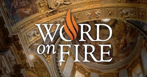 Father Barron's Word on Fire
