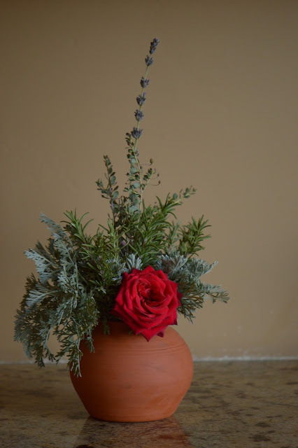 rose Olympiad, flower arrangement, small sunny garden, desert garden, monday vase meme, amy myers, photography