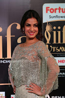 Sonal Chauhan in a stonework Floor Length Silver Designer Gown at IIFA Utsavam Awards March 2017 003.JPG