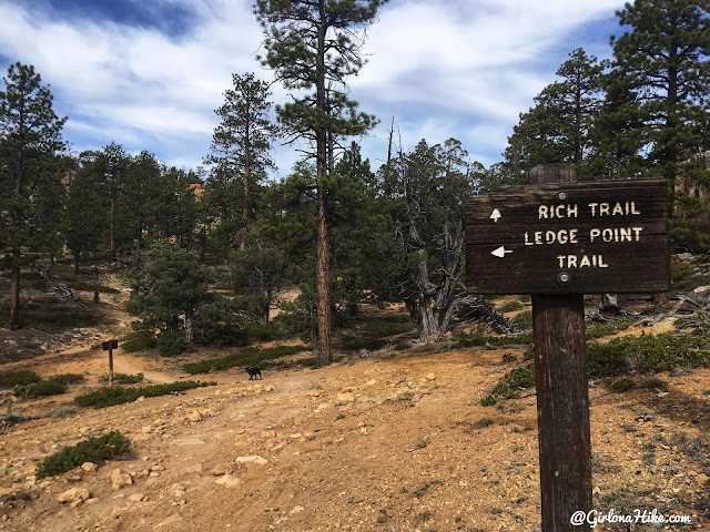 Hiking the Butch Cassidy Trail, Red Canyon near Bryce Canyon National Park