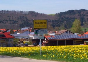 German Village Produces 321% More Energy Than It Needs - Wildpoldsried Windmills