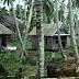 Pengertian Desa Swadaya, Desa swakarya, Desa swasembada Menurut Aktifitasnya