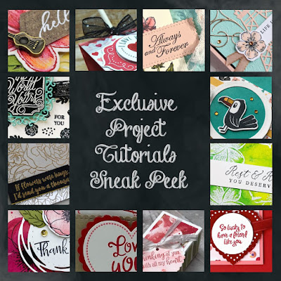 Exclusive Project Tutorials Sneak Peek  for my customers | Nature's INKspirations by Angie McKenzie