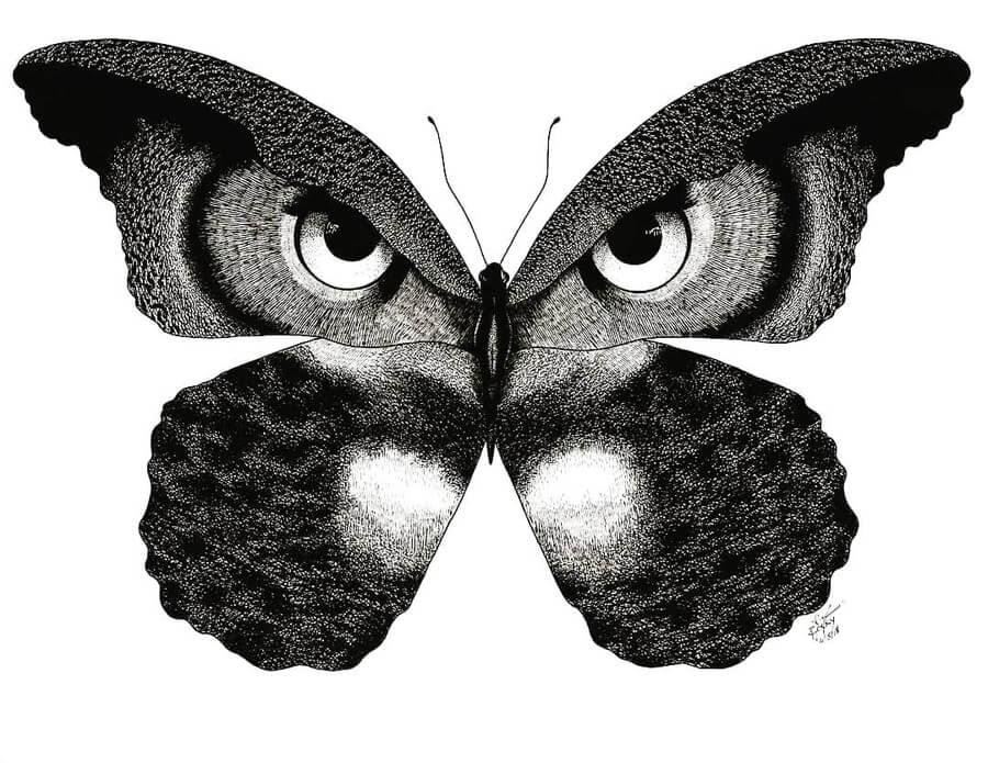 02-Owl-Butterfly-Rocky-Villaruel-www-designstack-co