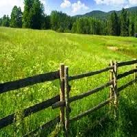 Pahami Proses Jual-Beli Tanah atau Rumah Warisan yang Benar
