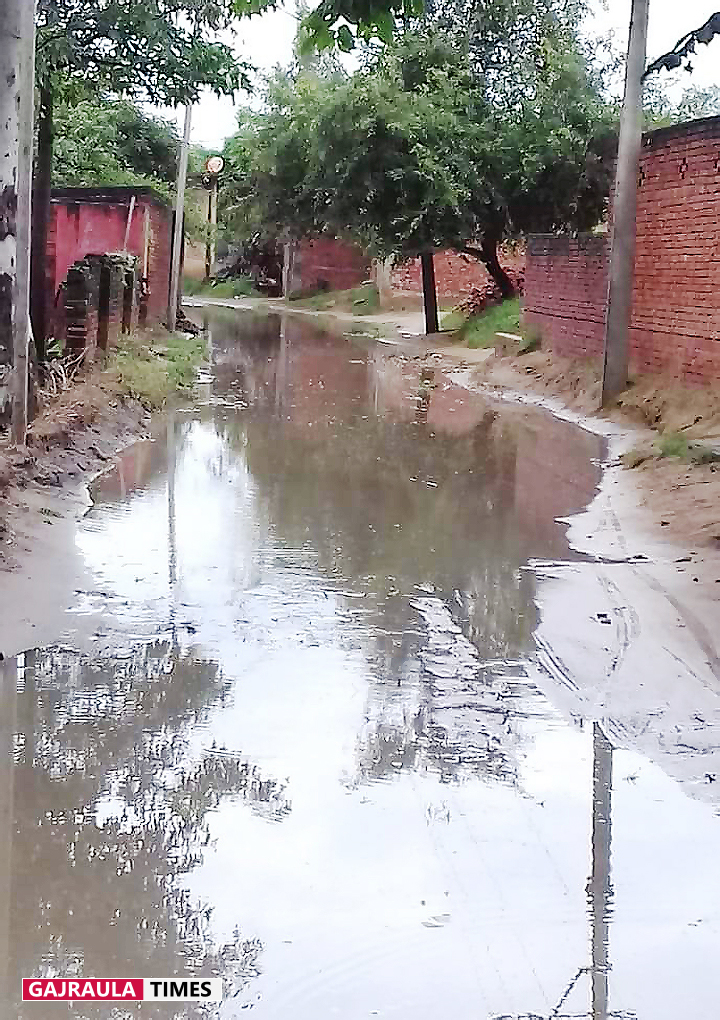 village sadpur gajraula amroha