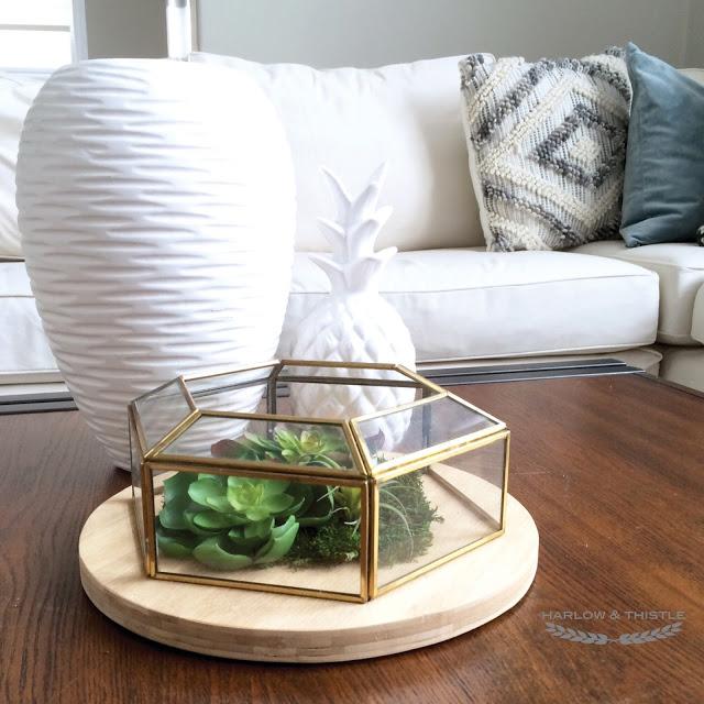 DIY Succulent Terrarium from a light fixture