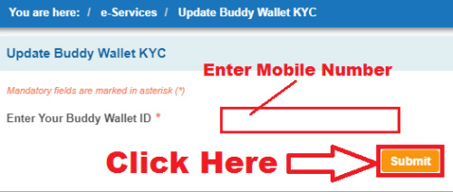 how to upgrade buddy wallet through sbi net banking