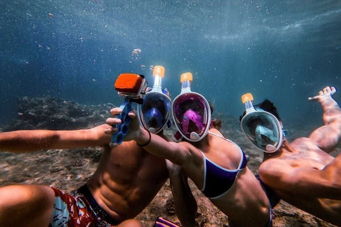 Free Delivery: Full-Face Snorkeling Mask