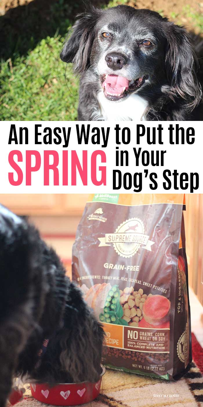 Help your dog get the spring back in his step with a 10 day detox and Supreme Source®! Your dog will love this healthy balance of meat, fruit, and vegetables for a complete diet with the vitamins and minerals he needs. Get back to feeling and looking good this spring so you can go on walks, play, and enjoy the weather. Learn how to help your dog feel better in just 10 days here. #ad #SuperFoodSwitch #IC