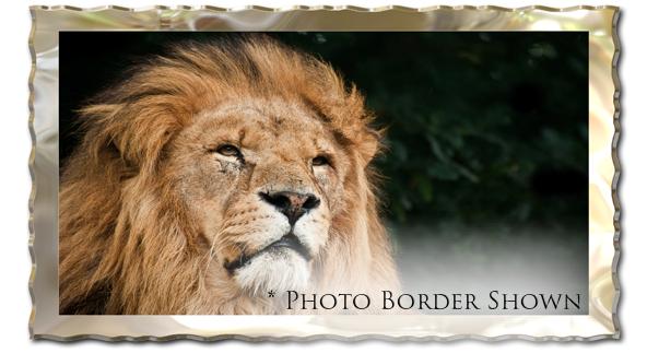فلاتر معالجة الصور للفوتوشوب,Photoshop Filters Download, فلاتر فوتوشوب, تحميل فلاتر AUTO FX للفوتوشوب, تحميل مؤثرات AUTO FX, AUTO FX للفوتوشوب,تحميل فلاتر الفوتوشوب, تحميل فلاتر للفوتوشوب