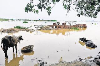 bihar-flood-toll-reaches-98