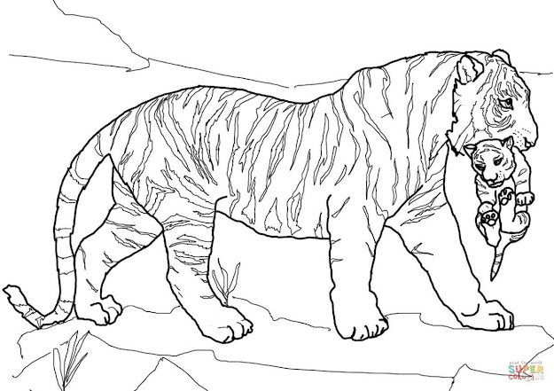 Click The Mother Tiger Carrying Cub Coloring Pages