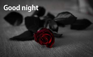 good night black rose images