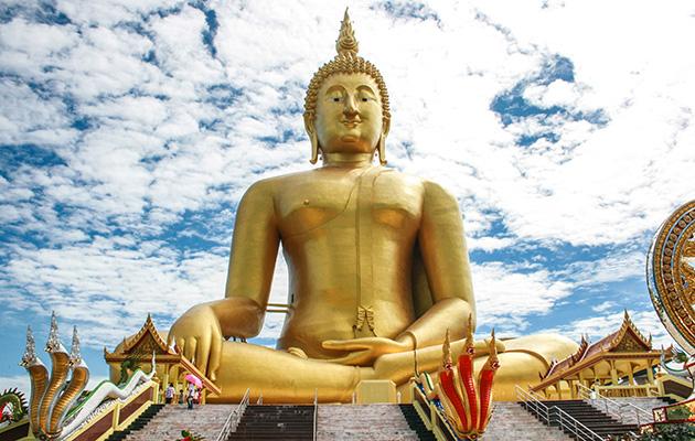 Guda dorad Tailandia