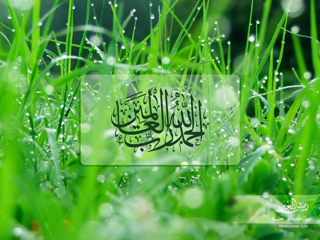 TOP AMAIZING ISLAMIC DESKTOP WALLPAPERS: December 2011