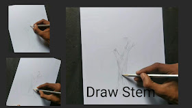 How to draw tree how to draw a stem for tree ,step by step tutorial for to draw Trees, how to draw Trees, drawing for begginers, basic drawing tutorial