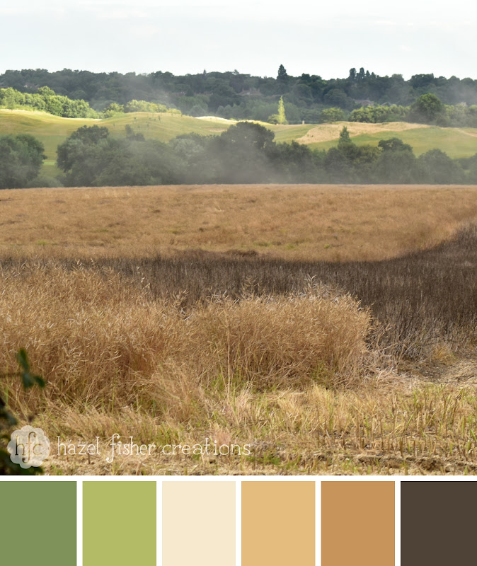 Colour Palette No.30 Harvest Time Field - Hazel Fisher Creations