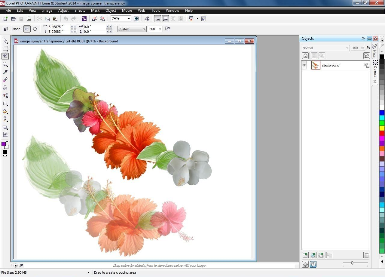 Coreldraw Graphics Suite V X7 Download Link