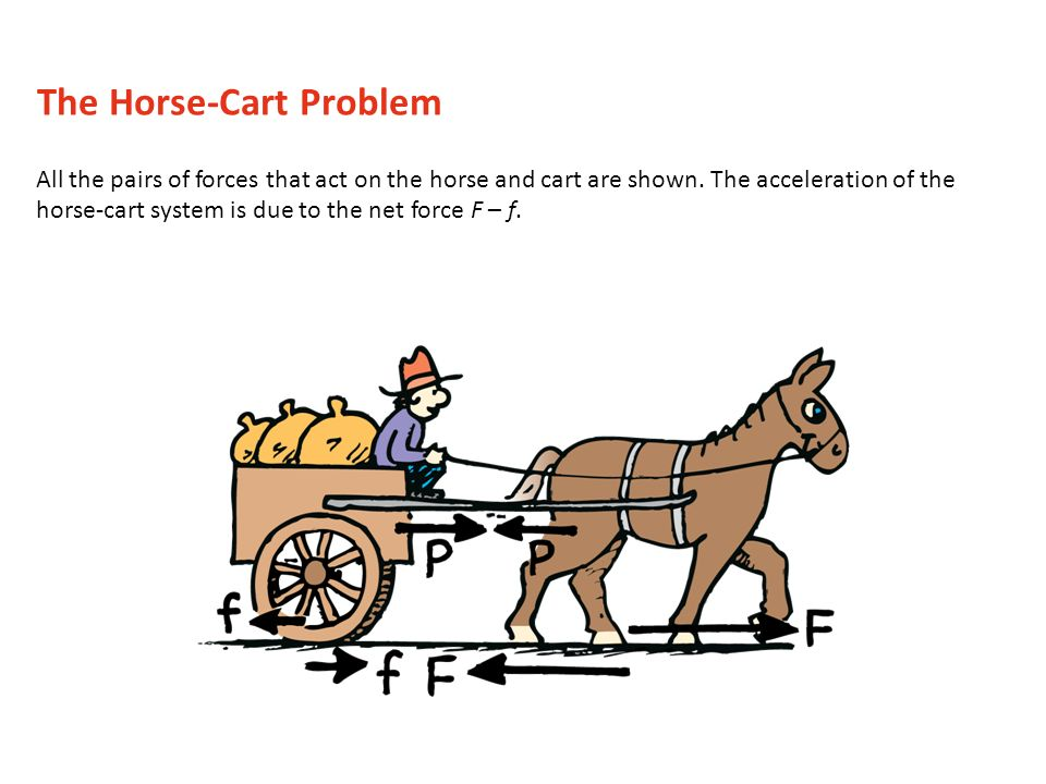 the diagram below displays the forces that are present on both the horse  and the cart