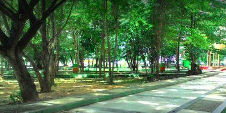 Taman Walikota Kendari Tempat Bersantai Sambil Menikmati Angin Sepoi-Sepoi Diantara Pepohonan