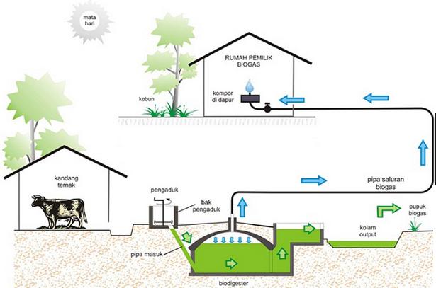 Materi Dan Soal Ipa Untuk Sma Peran Bioteknologi Dalam Bidang Pelestarian Lingkungan