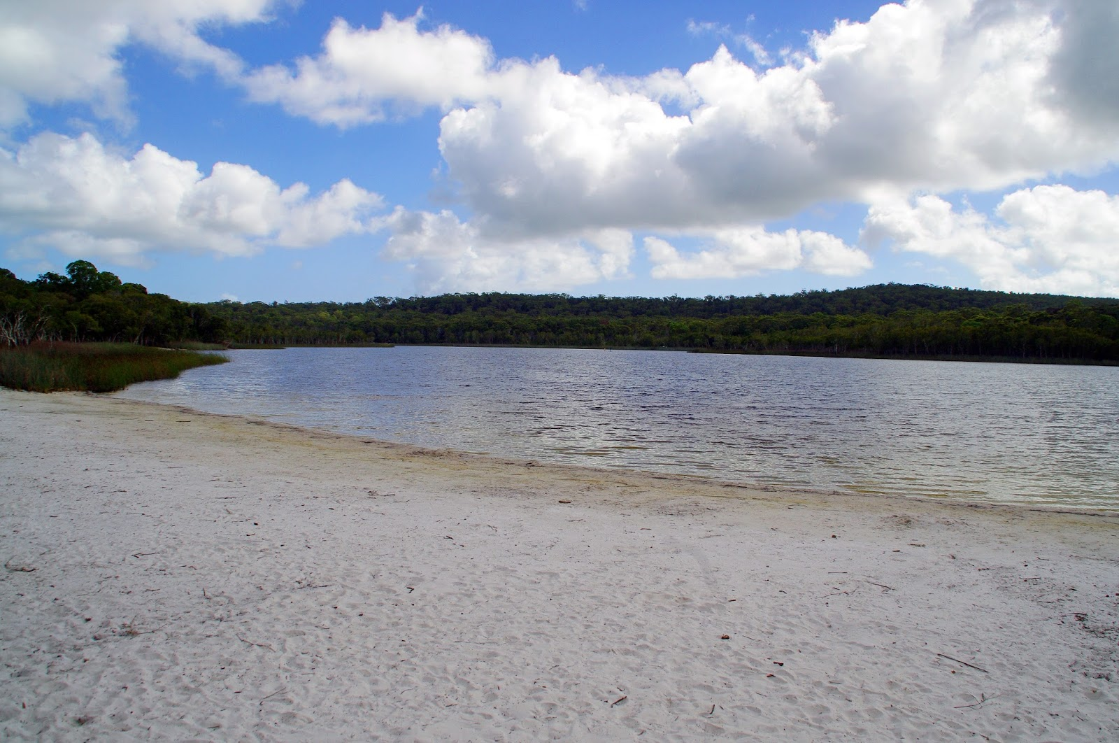 Brown Lake Stradbroke Island
