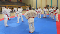 Ángel Ramiro, curso de kumite deportivo, karate, kumite