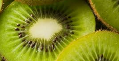 Kiwi Fruit Pre-biotic Property