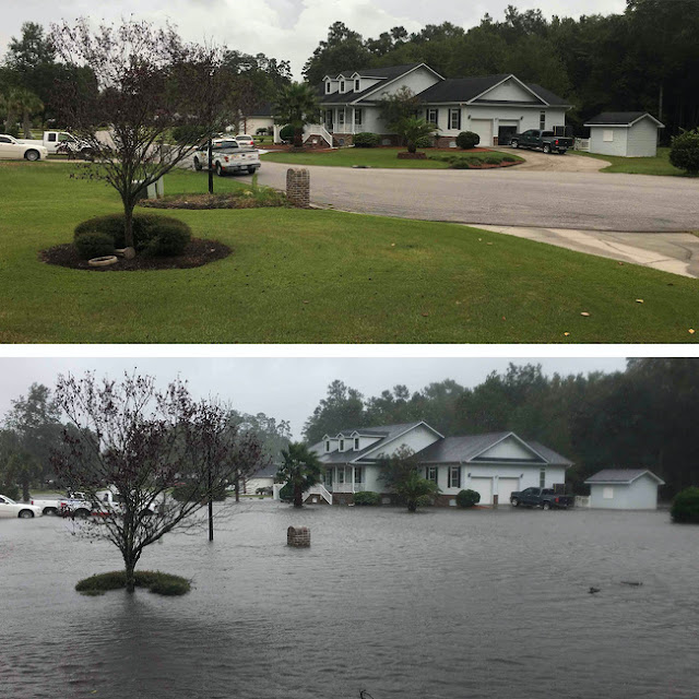A front yard before and after a hurricane