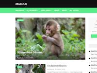 En Kullanışlı Blogger Teması - Marcus  (Güncellendi)