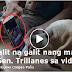 Must Watch! Isang Aso ang Galit na galit kay Trillanes sa Pagpuna kay Pangulong Duterte sa hindi pagdalo sa Independence Day Rites