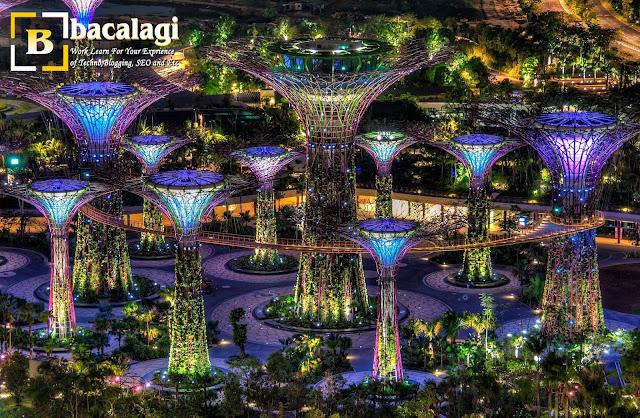 Gardens by The Bay, Tempat Wisata di Singapura : tempatwisata.biz.id
