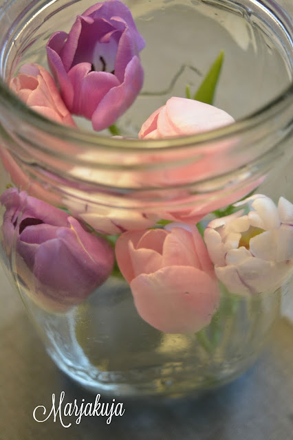 tulppaanit riihimaen lasitolkissa