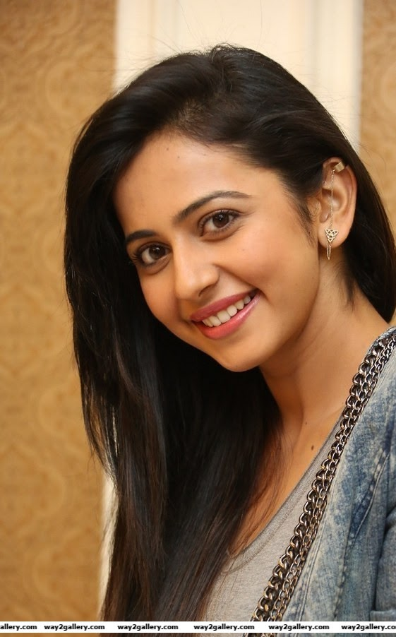 rakul preet singh photo gallery and rakul preet singh spicy gallery 3